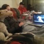 собаки общаются по SKype