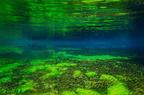 Самое чистое и прозрачное озеро в мире 2
