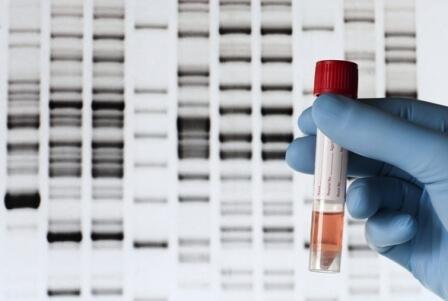 изучить-ДНК