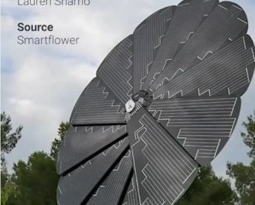 Цветочная солнечная панель производит много энергии