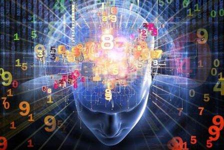 О слоях сознания,  великой «грибнице» и интеллекте