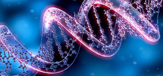Количество ДНК в растительных клетках влияет на то, кто их будет есть