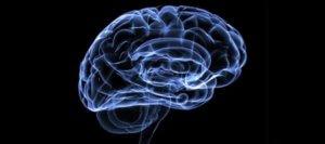 мозг-деятельность