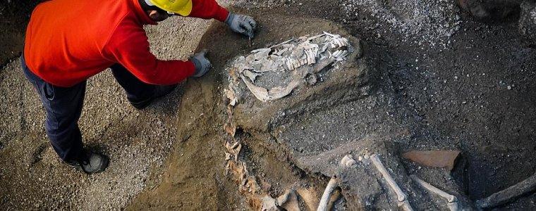 Окаменевшие останки запряженной лошади были найдены возле Помпеи