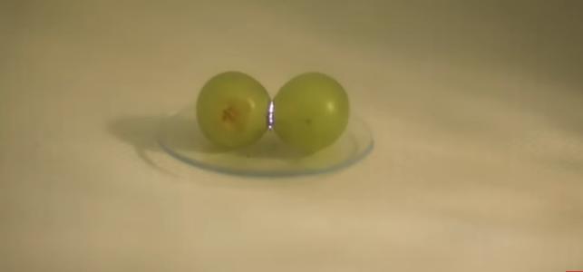 Раскрыта самая известная загадка интернета про микроволновку и виноград
