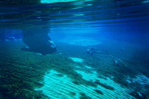 Самое чистое и прозрачное озеро в мире 6