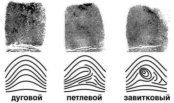 Отпечатки пальцев: уникальны ли они?