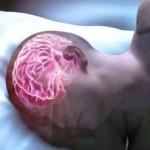 Вывод токсинов из мозга - главное предназначения сна!