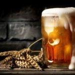 Литр пива каждый день: что будет?