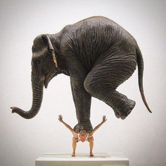 слон на человеке