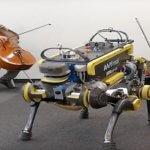 Роботы-животные, которые могут танцевать