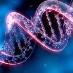 Могут ли все ваши цифровые фотографии храниться в виде ДНК?