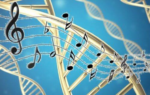 музыка-ноты-дтк