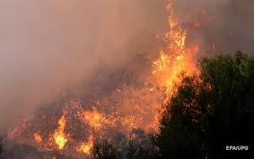 лес-пожары-калифорния