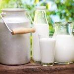 Сырое молоко может распространять опасные гены, устойчивые к антибиотикам