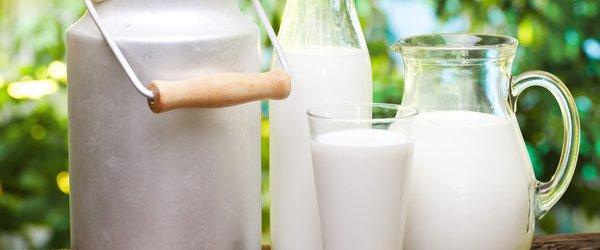 молоко гены