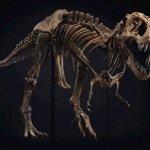 Продается огромный скелет тираннозавра, почти полный