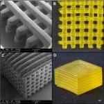 Пластина из нитрида кремния защитила живые клетки во время 3D-нанопечати