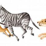 Датчик движения предотвратит браконьерство, распознавая панику животных