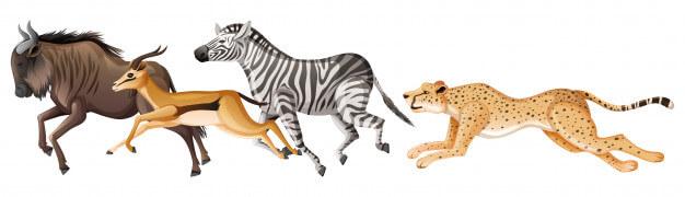 животные паника 2