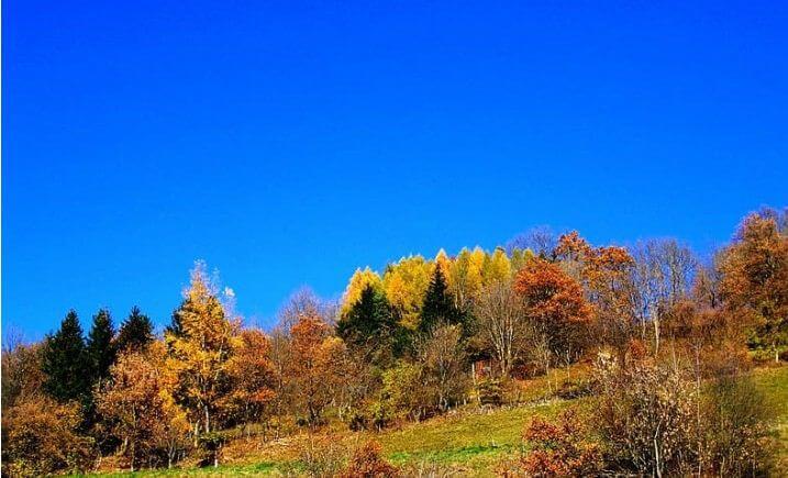 небо голубое осень