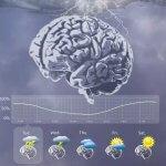 Мозговой имплантат помог предсказать приступы эпилепсии
